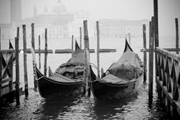 Venice-4268