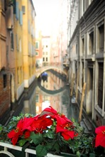 Venice-4328
