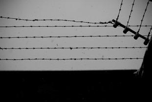 Mauthausen-4350