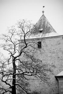 Prague-4466