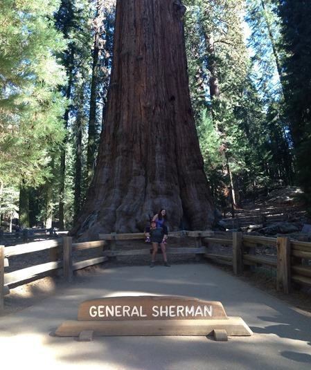 Yosemite-7030