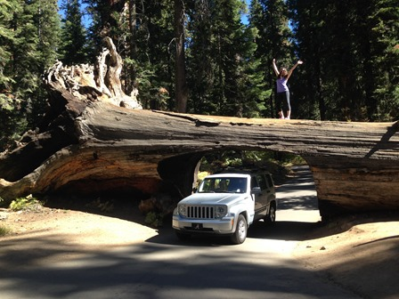 Yosemite-7076